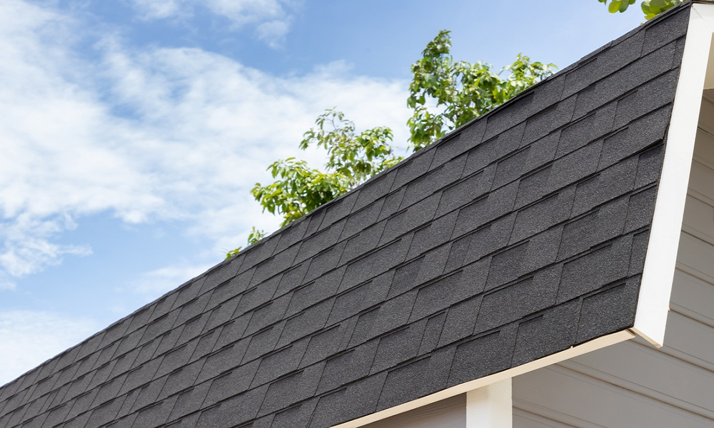 rubber roofing in a house