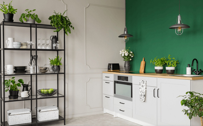 green and gray kitchen interior with plants