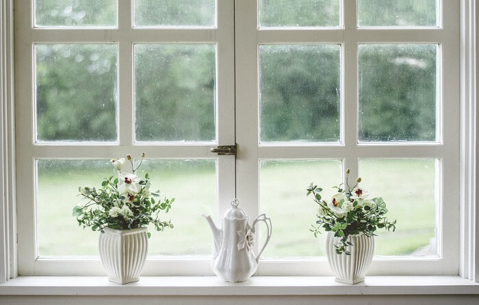 white window with plants
